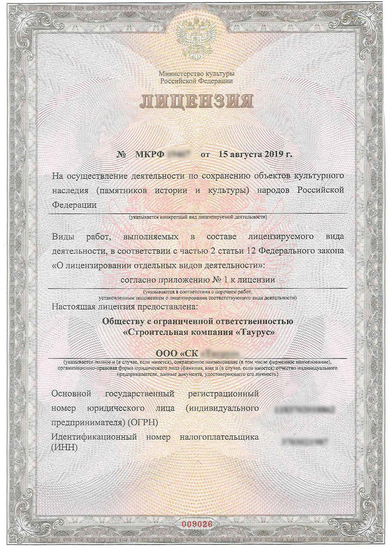 Лицензия Министерства культуры образец